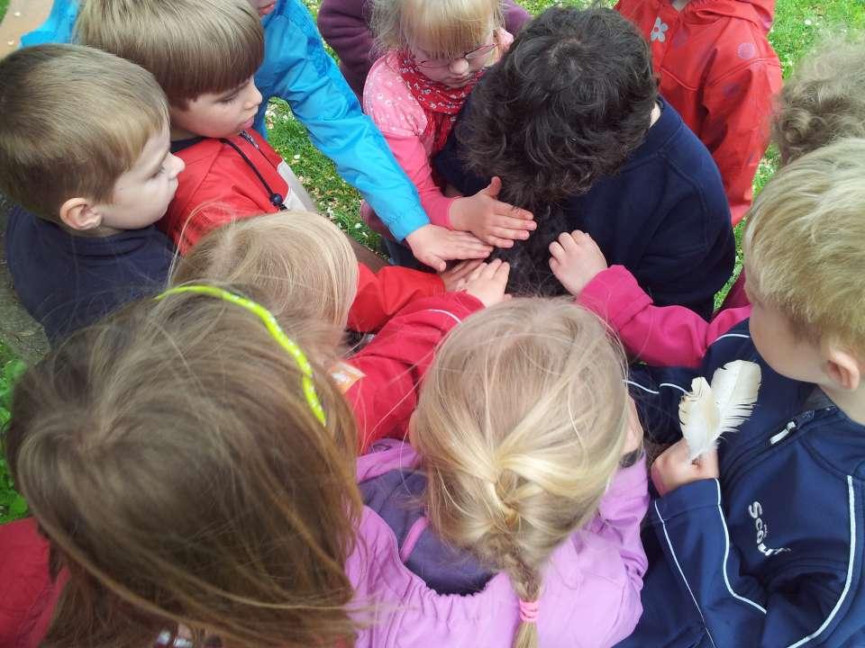 Kindergeburtstag Wolfsburg Bauernhof